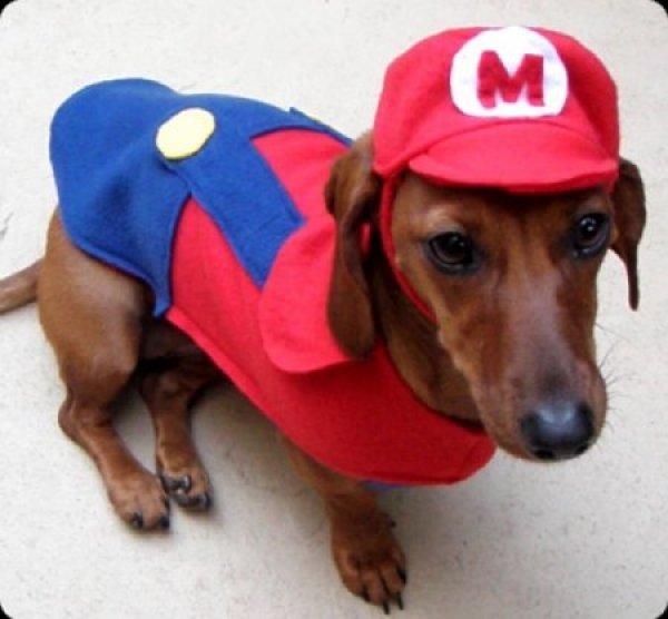 4 Mario