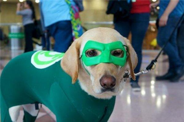 8 Green Lantern